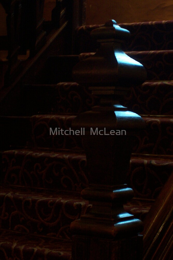 LIGHT AND DARKNESS by Mitchell  McLean