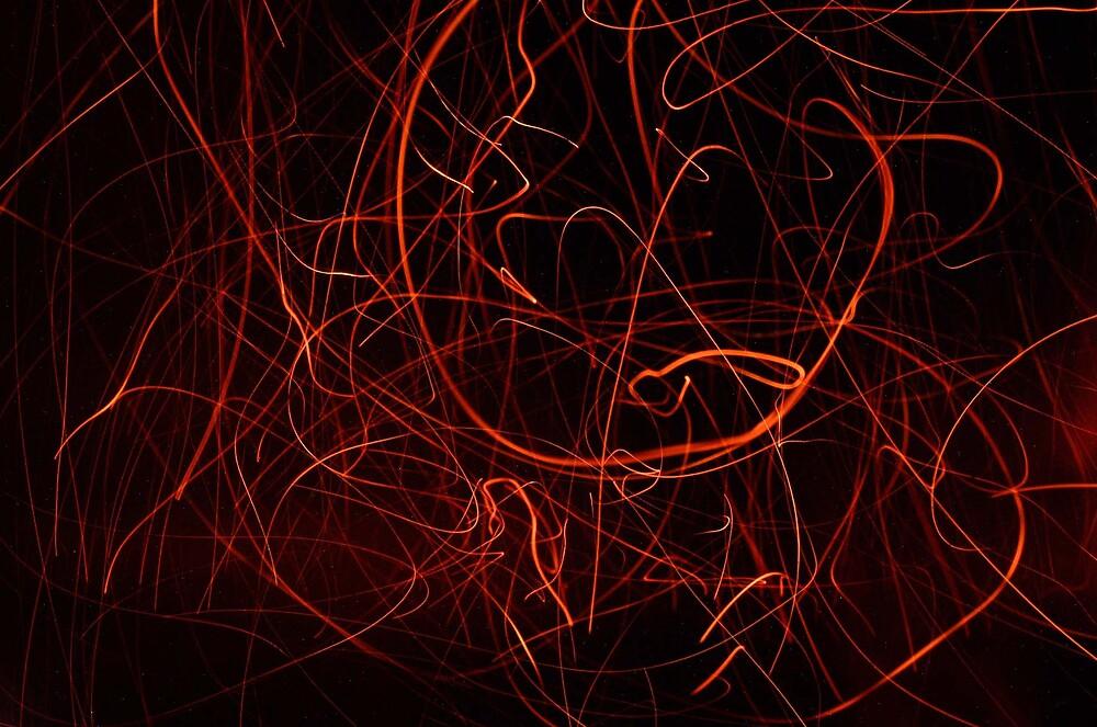 firefly trails by skydiamond