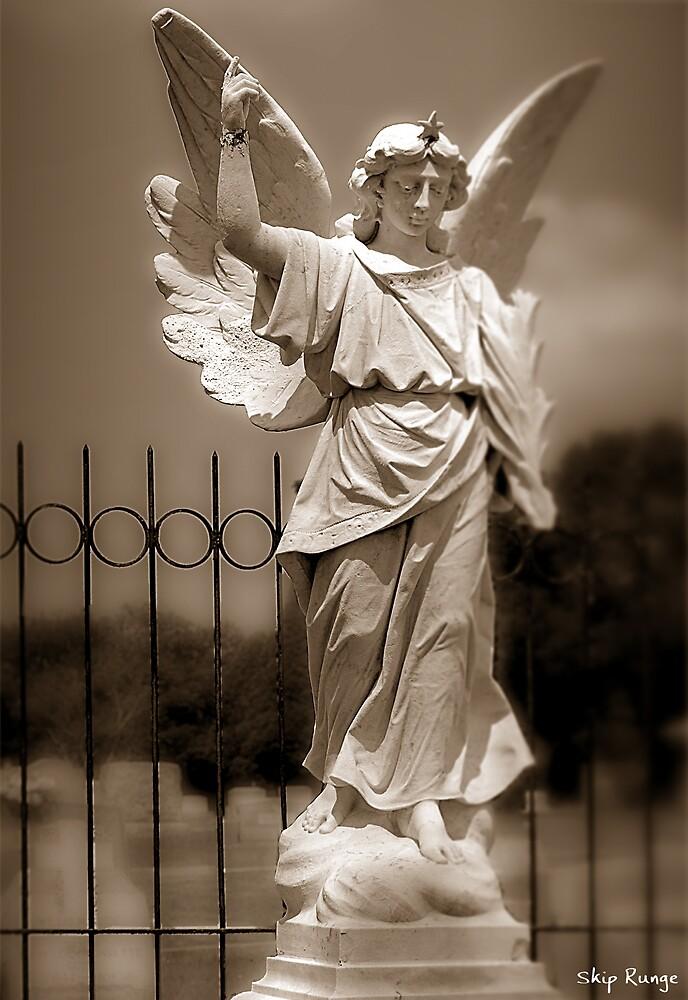Wolfe's Angel by Skip Runge