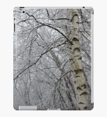 Its Snow Time of Year iPad Case/Skin
