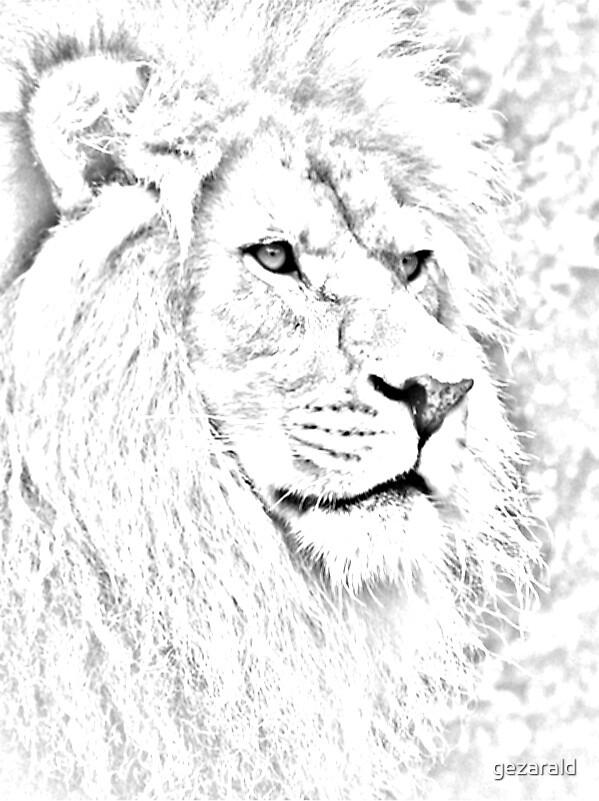 the phantom lion by gezarald