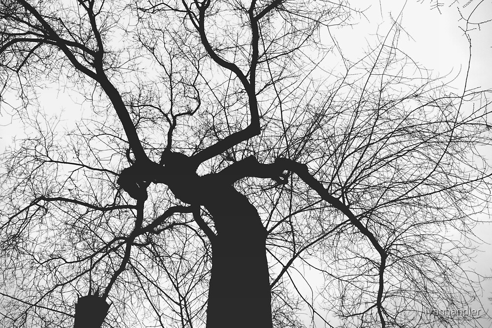 Tree by ivanhandler