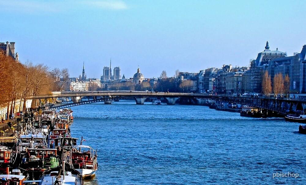 Blue Seine by pbischop