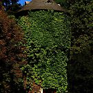 Hidden Tower by artisandelimage