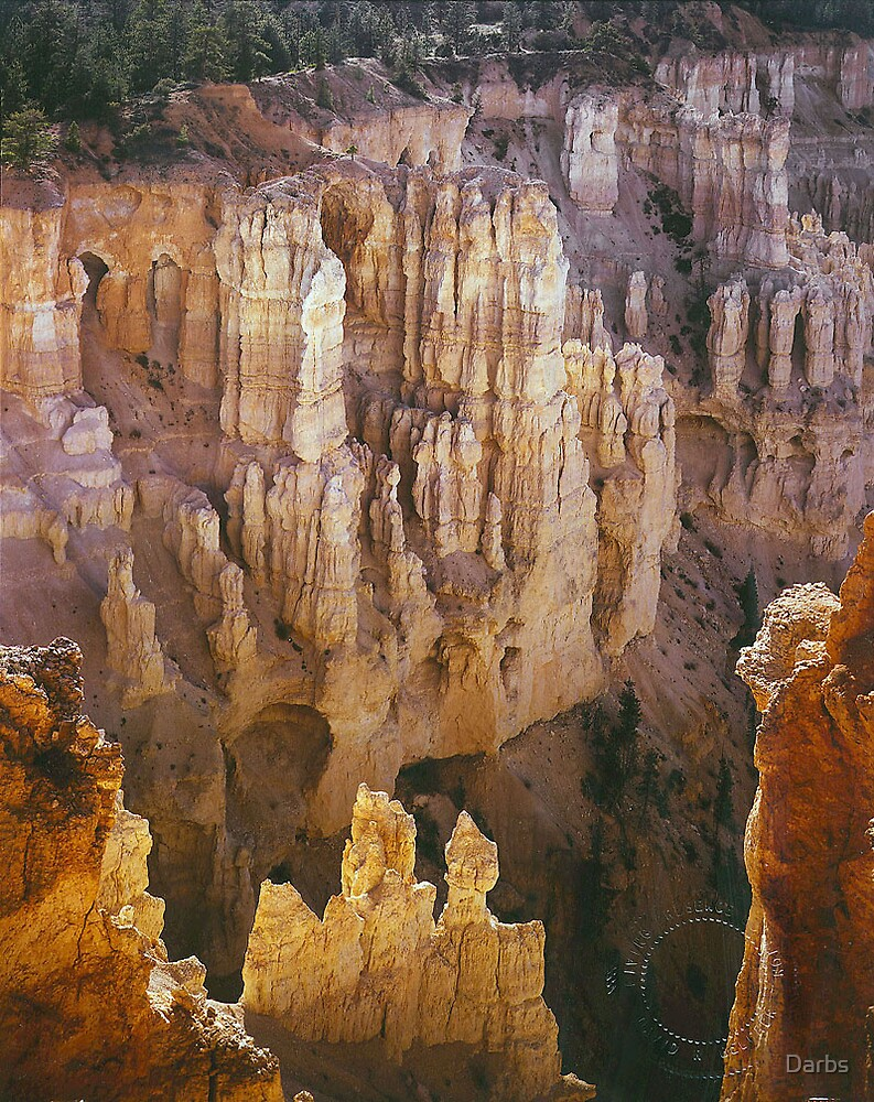 The Wall of Windows, Bryce Canyon, Utah by Darbs
