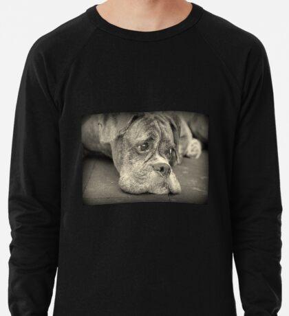 Luthiens Porträt in Monochrom - Boxer Dog Series Leichtes Sweatshirt