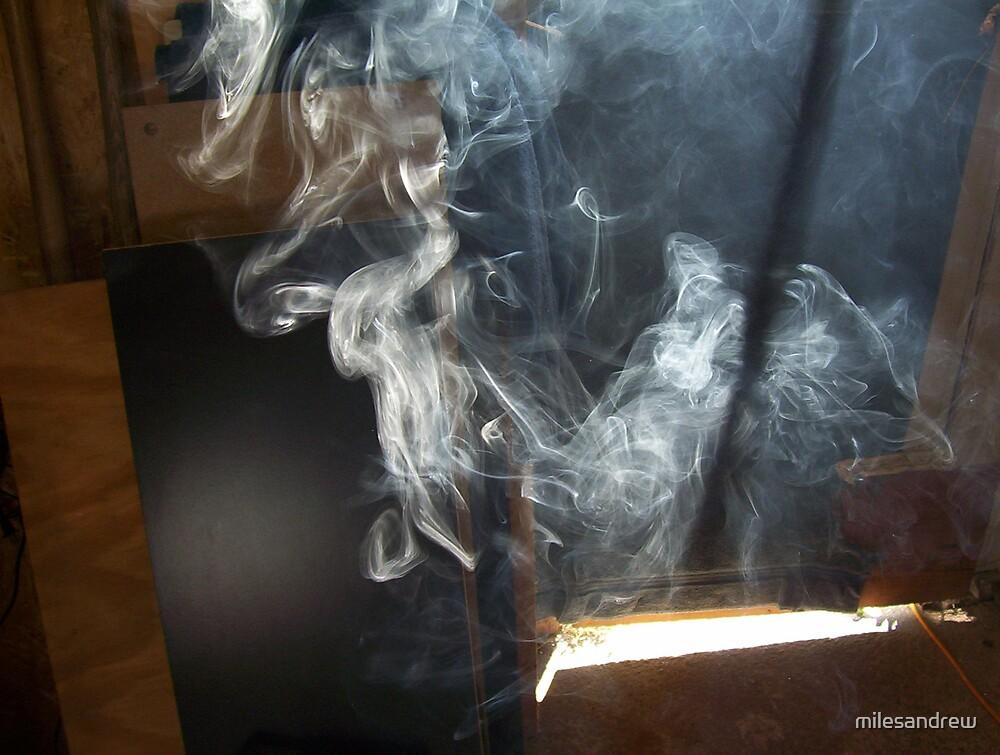 smoke sculptures by milesandrew