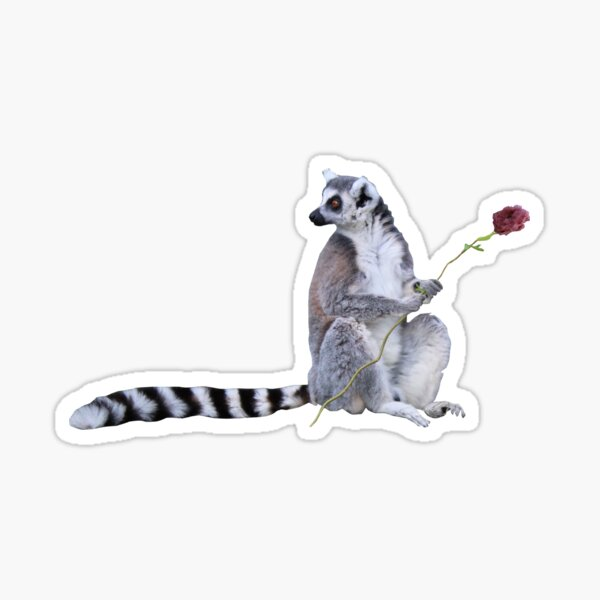 Cute Lemur and flowers Sticker