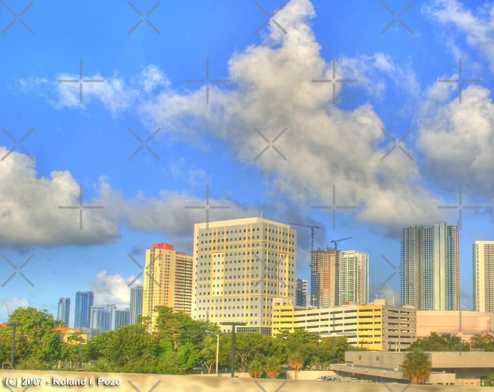 Downtown Miami - DSC_1554 by photorolandi