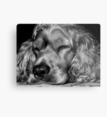 Sleepy,,,sleepy Metal Print