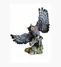 Owl & Prey  Photographic Print