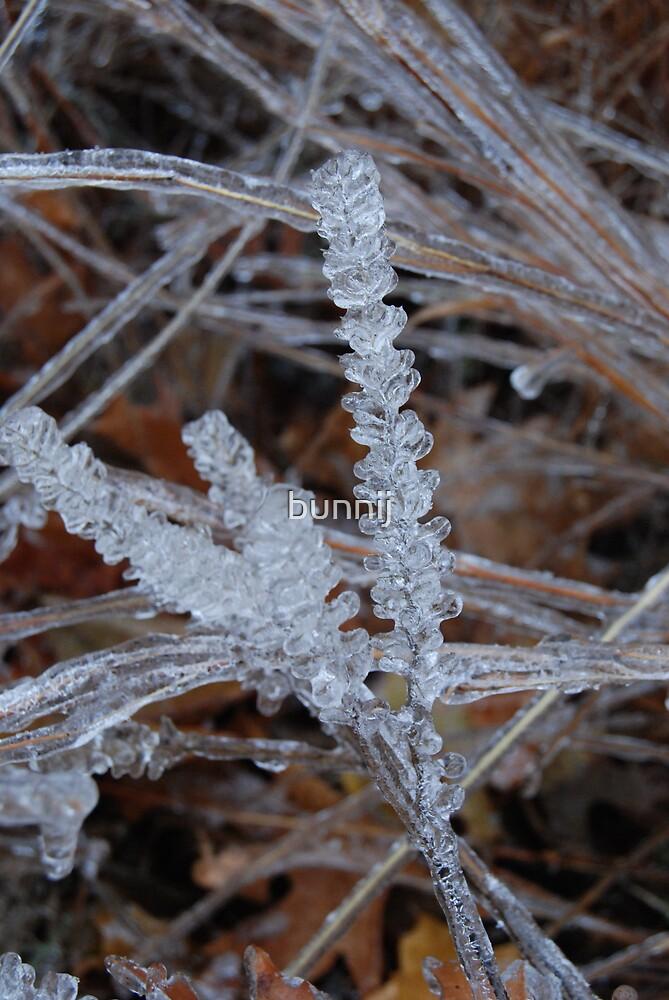 Beautiful Ice by bunnij