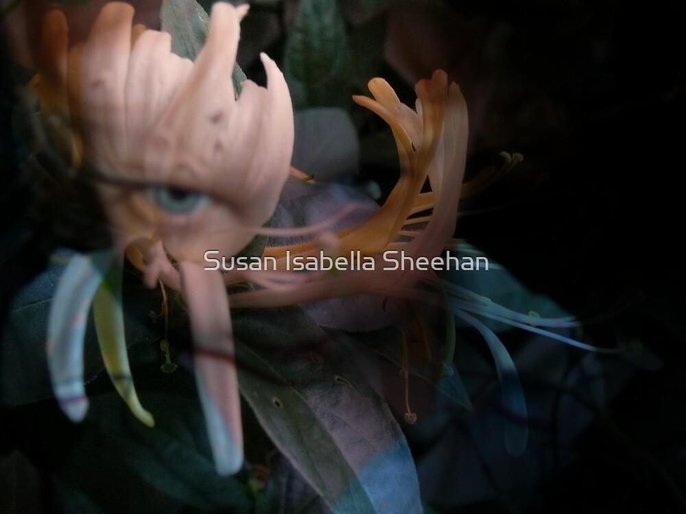 Moments Between Reflections by Susan Isabella  Sheehan