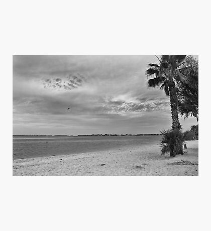 Morning at Cape Coral Beach  Photographic Print