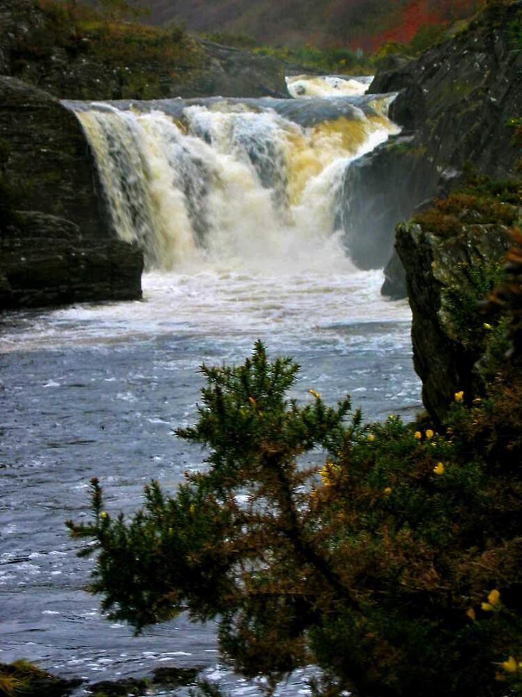 waterfall with gorze by western