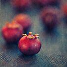Cranberries by Jill Ferry