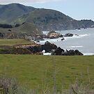 USA West Coast by mik013