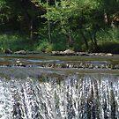 Waterfall by © CK Caldwell IPA