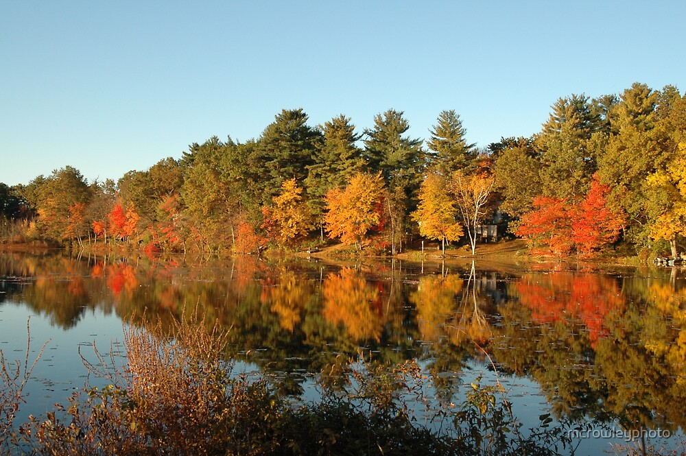 Foliage of New England by mcrowleyphoto