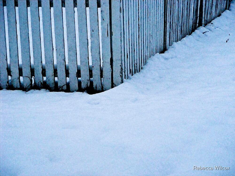 The Fence by Rebecca Brann