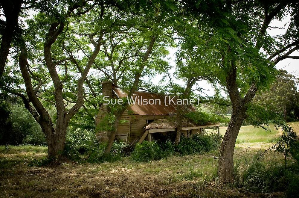 Renovators delight by Sue Wilson (Kane)