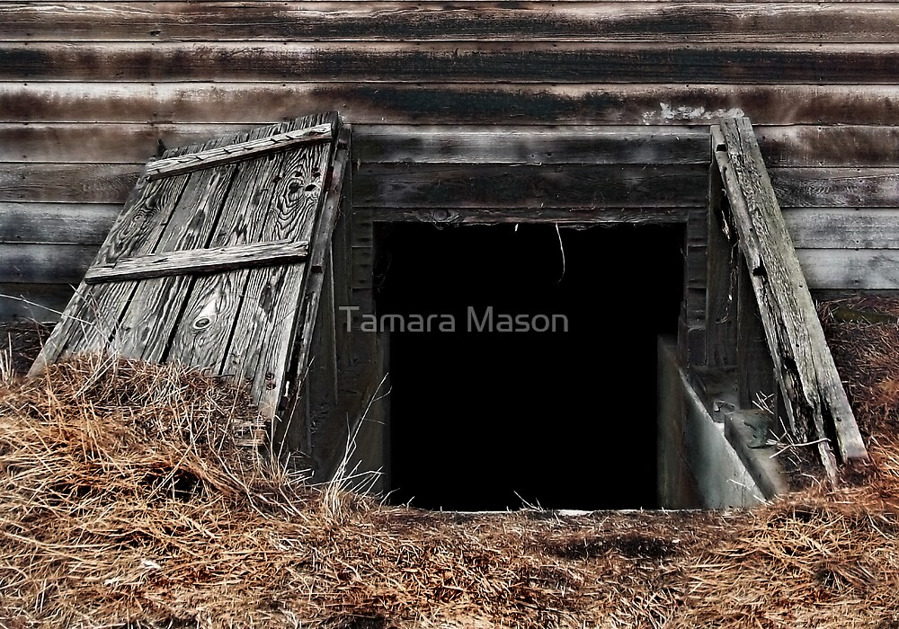 Invitation Only by Tamara Mason