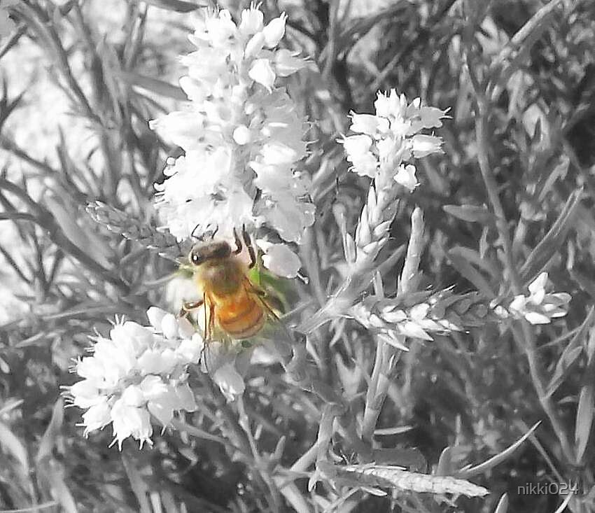 THE BEE by nikki024