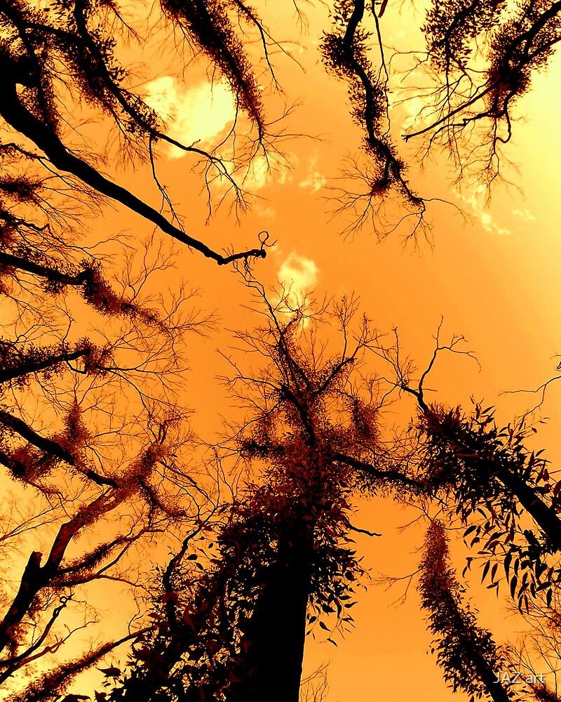 Forest Fire... by JAZ art