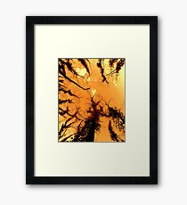 Forest Fire... Framed Print