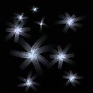 Stars by Silvia Ganora