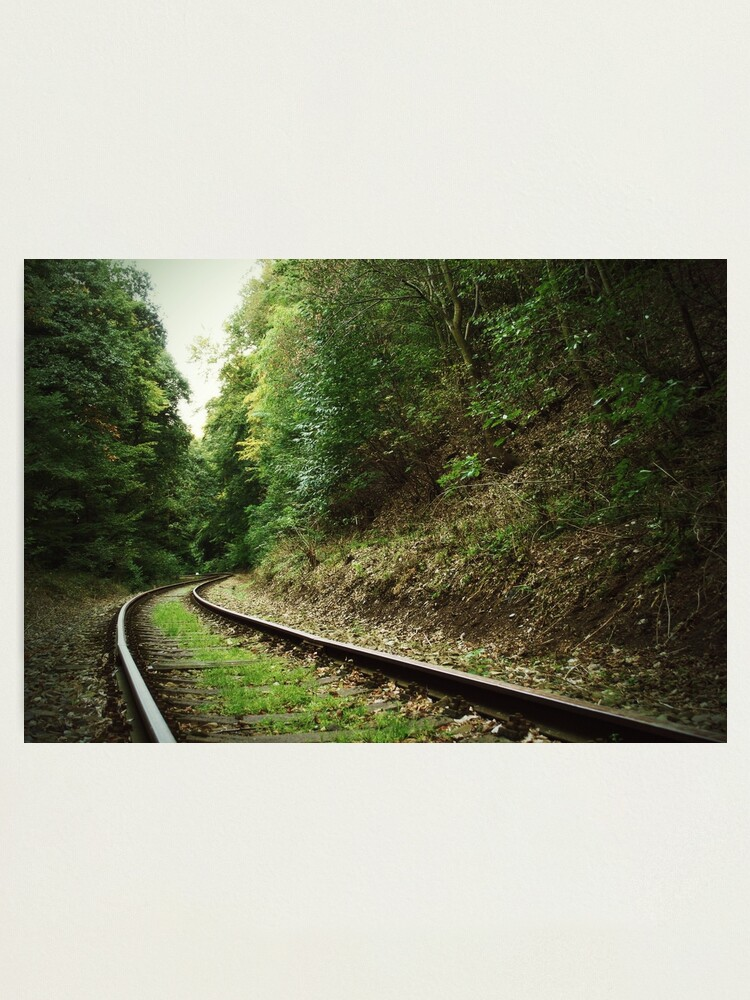 Alternate view of Railway in the forest Photographic Print