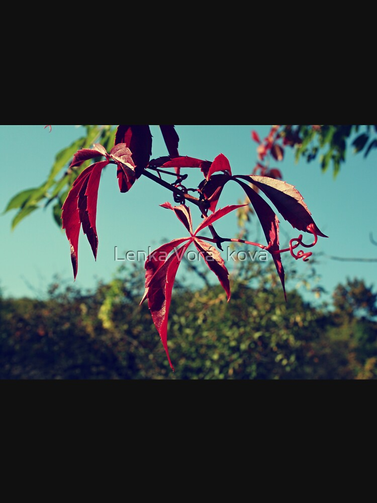 Red leaves by Trin4ever
