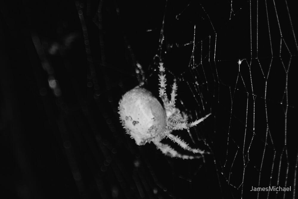 Arachnophobia by JamesMichael
