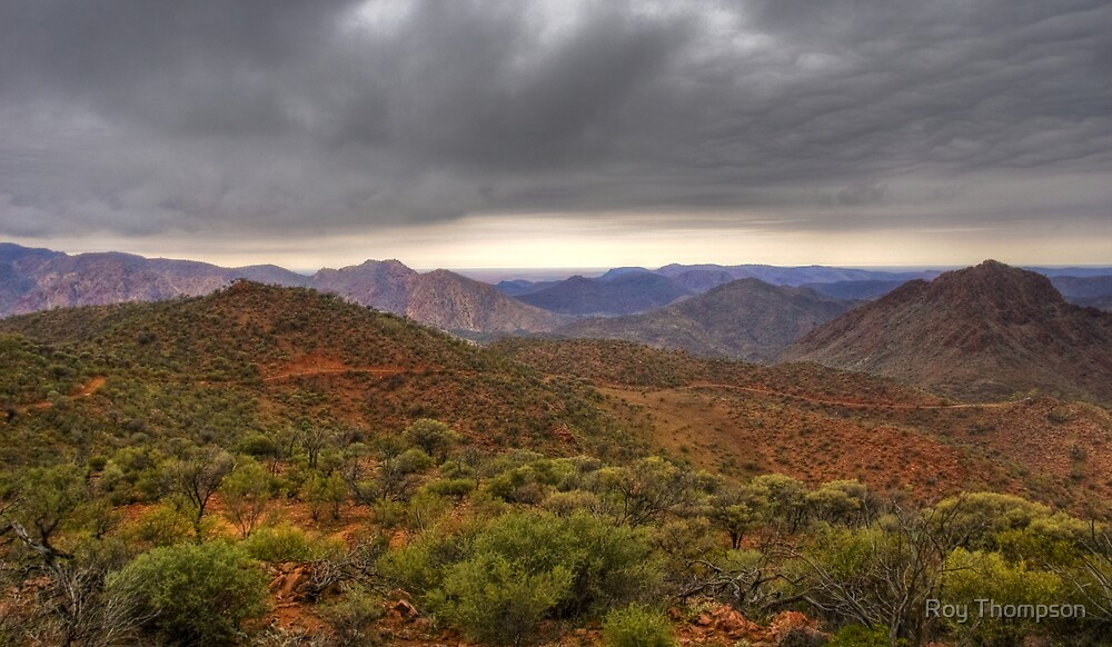 Flinders Ranges and Lake Frome  by Roy Thompson