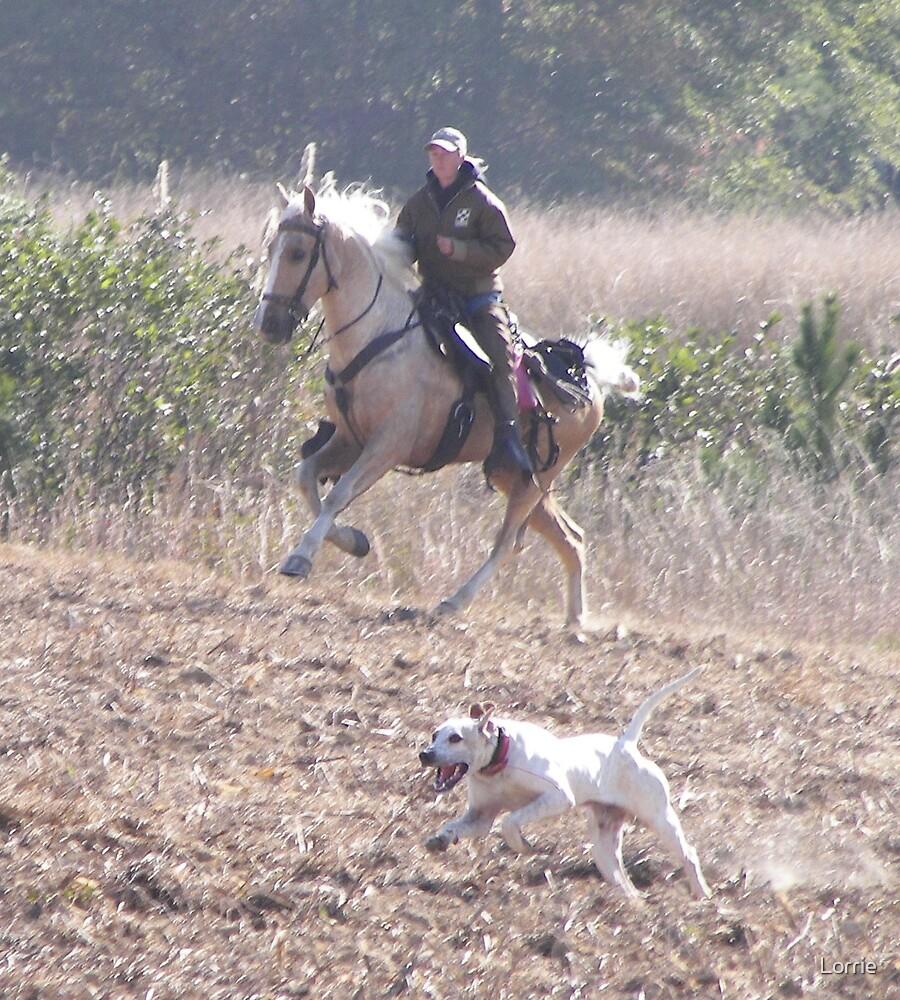 Field Trial by Lorrie