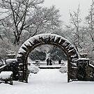 Gate to Winterland by MaluC