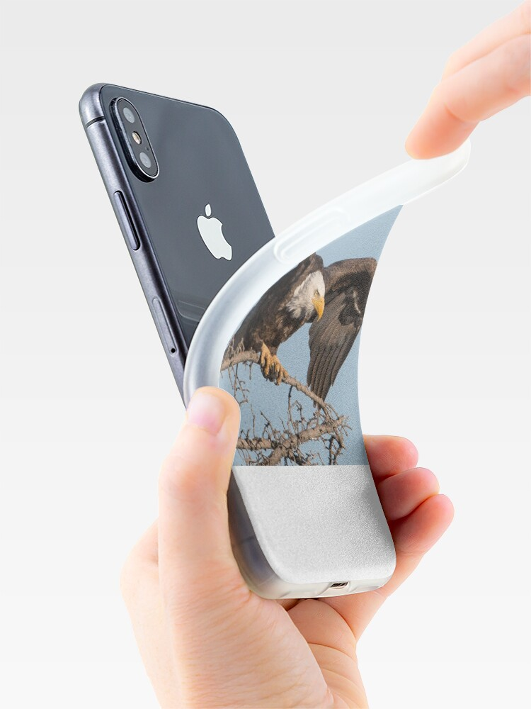 Alternate view of Bald Eagle: prelaunch wing test iPhone Case & Cover