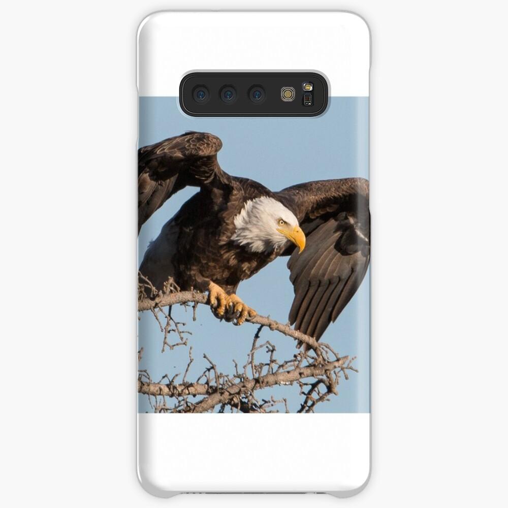 Bald Eagle: prelaunch wing test Case & Skin for Samsung Galaxy