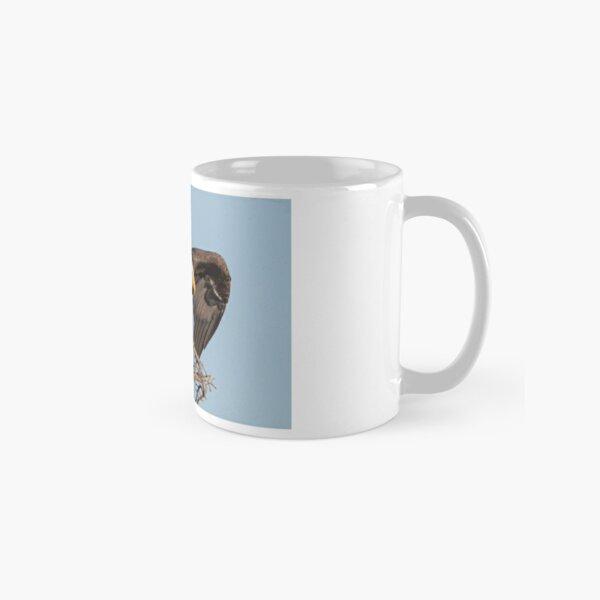 Bald Eagle: prelaunch wing test Classic Mug