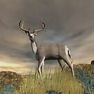 Trophy Buck by Walter Colvin
