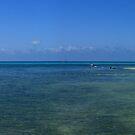 Green Island - Great Barrier Reef  by Gino Iori