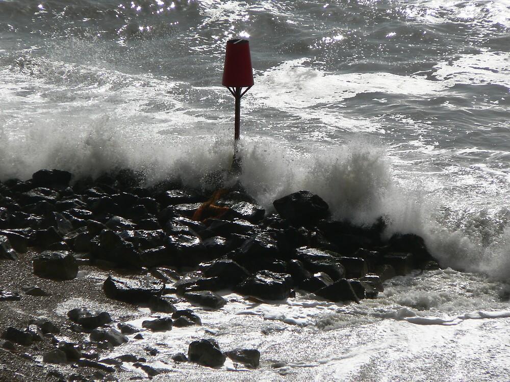 Stormy Coast by Vanessa Combes
