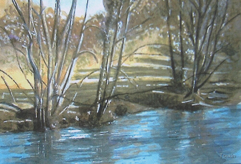 River Barle 2, Exmoor, Somerset by Tonkin