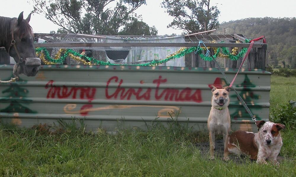 MERRY CHRISTMAS by Lyndie Easton