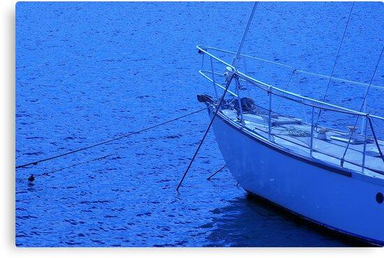 Blue Tranquillity by Aussiebluey