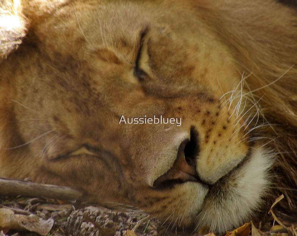 Sleepy Kitty. by Aussiebluey