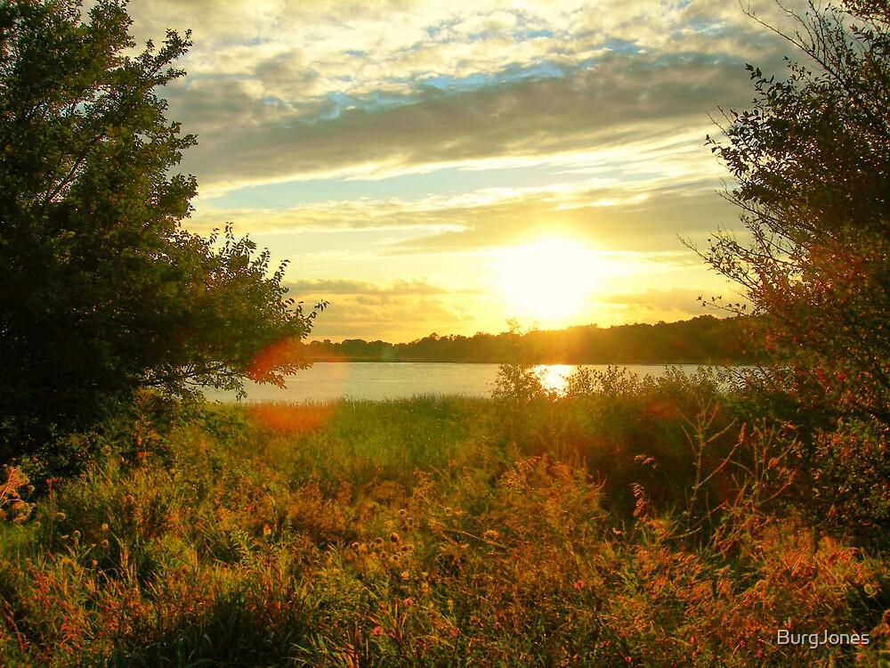 Sunset Lake by Michael Rudd