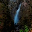 Grey Mare's Tail Falls by jakeof