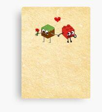 Building Love  Canvas Print