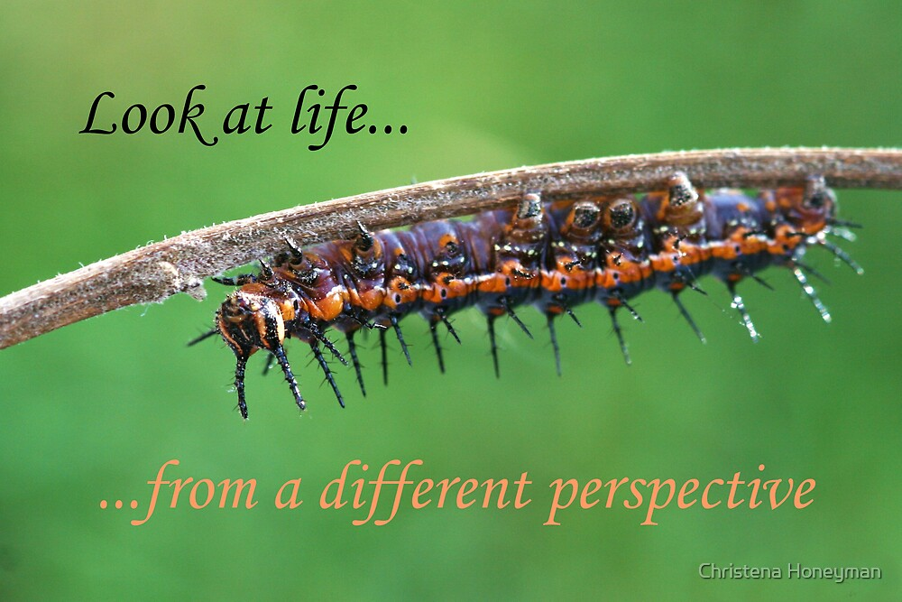 Look At Life From A Different Perspective by Christena Honeyman